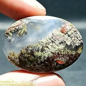 45ct Natural Green Brown RED GARDEN Moss agate ~Stunning Landscape Picture~