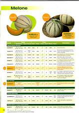 clause sementi melone saphir liscio senza fett busta x 1000 semi, a lunga conser