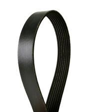 Serpentine Belt fits 2007-2009 Nissan 350Z  CONTINENTAL ELITE
