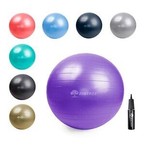 21.6″ (55 cm) Yoga Ball Exercise Core Stability Strength Anti-Burst Purple