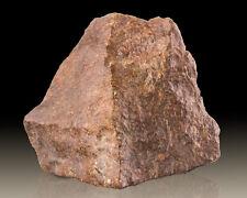 "3.6"" 397g Stony Iron CHONDRITE METEORITE NWA w/Fusion Crust Morocco for sale"