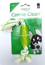 NEW Multipet Canine Clean Rope With TPR Tube 6 inch Spearmint Free Shipping