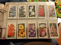 Garden Flowers (1933) Wills Cigarette Cards - Buy 2 & Save