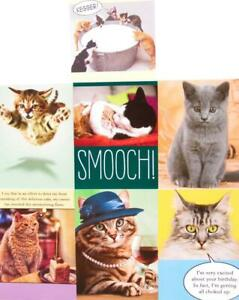 CAT THEMED BIRTHDAY CARD Recycled Paper Greetings FUNNY Kitten / Cat CARD