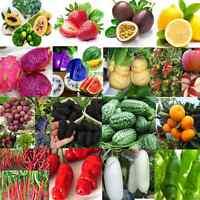 Various Antioxidant Fiber Health Fruit Seeds Home Garden Vegetables Plants Decor