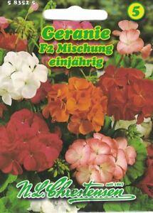Chrestensen Geranie F2 Mischung  Samen für ca. 12 Pflanzen   583525
