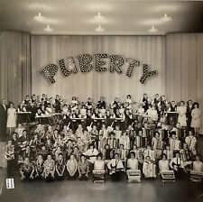 LP PUBERTY S/T THE INTELLIGENCE DEVO OH SEES TY SEGALL BAND B-52s JC SATAN USE