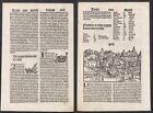 1497 Pisa Italia Italy Schedel Inkunabel Incunable Holzschnitt woodcut