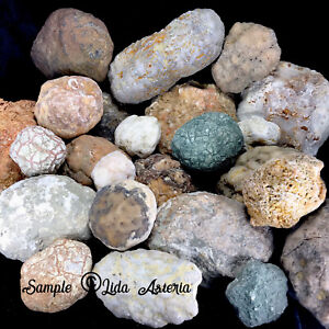 5Lbs Whole GEODES AGATES NODULES Lapidary Uncut Semi to Solid Unopened Quartz KY