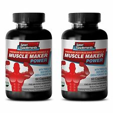 MUSCLE MAKER POWER 600 Boost Testosterone Level 5-Methyl-7-methoxy-Isoflavone 2B