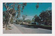 Rancho Sante Fe CA situated amid citrus & avacado groves eucalyptus acacia trees
