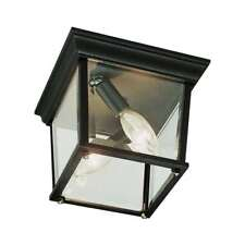 Trans Globe Cubed 9 1/4' wide Outdoor Ceiling Light in Rust - 4905 RT