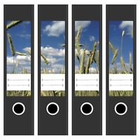 4x Design Akten-Ordner Aufkleber mit Motiv Feld Wolken Sommer / breite Ordner