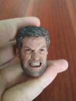 "Wolverine Angry Face 1/6 Scale Head Carving Male Fit 12"" Action Figure Toys"