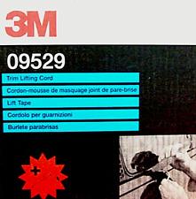 3M CORDOLO 09529 X GUARNIZIONE e PROTEZIONE CRISTALLI VETRI AUTO IN CARROZZERIA