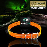 "Dogtra Genuine Replacement Dog Collar Strap 1""x 24"" Orange 1200NCP 1202NCP 200NC"