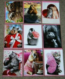 Lot 9 NEW Avanti Valentines Day Funny Animal Cat Dog Greeting Cards & Envelopes