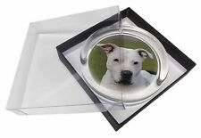 American Staffordshire Bull Terrier Dog Glass Paperweight in Gift Box, AD-SBT5PW