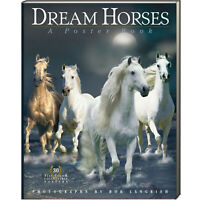 Dream Horses (Paperback, Poster Book) celebrate the beauty FREE shipping $35