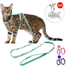 Nylon Pet Cat Harness and Leash & Personalised ID Name Tag for Small Puppy Dogs