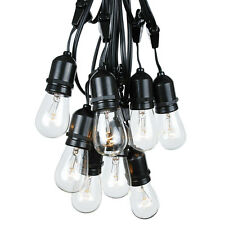 37.5 Foot S14 Outdoor Globe String Lights- Set of 25 S14 Clear Edison Bulbs