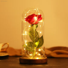 Enchanted Rose Beauty and The Beast Preserved Flower in Glass Immortal Gift.