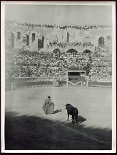 photo vintage . Arènes de Nîmes . Tauromachie . 24 X 18 cm