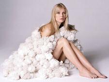 Gwyneth Paltrow Unsigned 8x10 Photo (8)