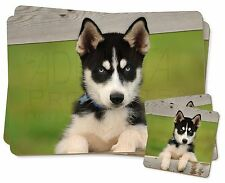 Husky Puppy Dog Twin 2x Placemats+2x Coasters Set in Gift Box, AD-H67PC