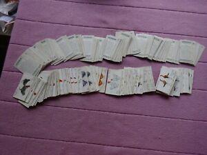 BULK SALE ODDS - ALL JOHN PLAYERS - POULTRY x 280 CARDS