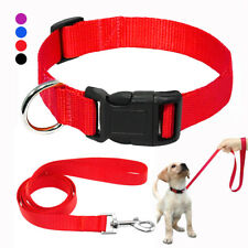Nylon Collars and Leashes for Small Dogs Pet Puppy Adjustable Chihuahua 4 Colors