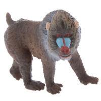 Simulation Bear Macaque Model Figure Kids Final Examiniation Prize Present