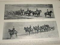 1896 Castagno Squadra Di E Batteria Rha ~ 3RD Campo Royal Cavallo Artiglieria