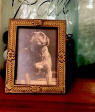 Vintage Pit Bull Terrier Dog Topsy Framed Miniature Arts & Crafts Tiny Frame