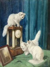 PITTURA ANIMALI gruppo Portrait Heyer curioso GATTI ART PRINT lah404a