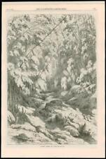 1869 ANTIQUE PRINT-Cuba illustration Forest Rocks River (078)