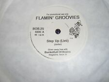 FLAMIN' GROOVIES /DENVER MEXICANS Step Up (Live) BUCKETFULL OF BRAINS 1989 PROMO
