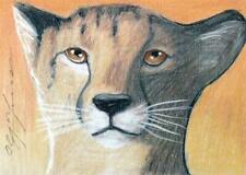 ACEO original pastel drawing  cheetah wildcat le guépard  by Anna Hoff