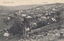 Ansichtskarte  Schlesien  Riesengebirge  Kiesewald