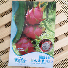 Dragon Fruit 40 Seeds Top Quality Giant Tropical Sweet Fruit Fresh Pitaya Seeds