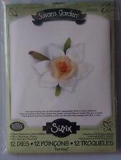 sizzix susans garden flower Narcissus 12 die set 658863