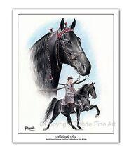 New listing Tennessee Walker walking Horse Art - Midnight Sun - famous stallion in action