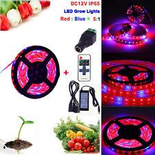 LED 5050 Strip Light Hydroponic fourniture Lumière Plant Grow Spectrum Eclairage