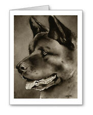 Akita note cards by watercolor artist Dj Rogers