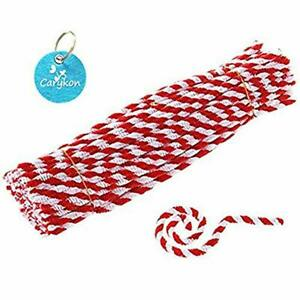 Caryko Striped Chenille Stems Pipe Cleaners Pack of 100 Red for Craft Projects
