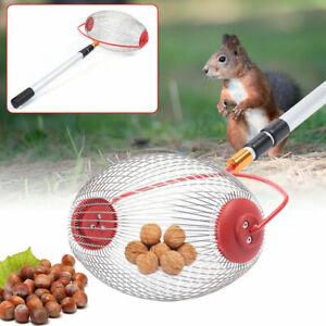 Nut Gatherer, Rolling Nut Harvester Ball Fruit Picker Walnuts Pecans Collector