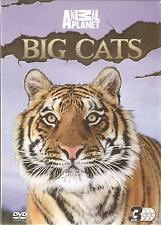 BIG CATS Discovery Channel  3 DVD BOX SET - AMBA THE RUSSIAN TIGER + WHITE LIONS