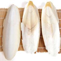 1 Bag Cuttle Fish Cuttlefish Bone Parrotts Turtle Budgie Birds Food Supplies Hot