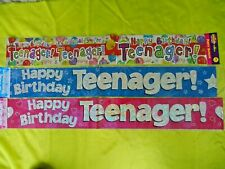 TEENAGER BANNER 13th BIRTHDAY PARTY - MULTI or BLUE or PINK - BOY GIRL age 13