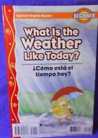 What Is the Weather like Today  Spanish=English Reader Beginner Book and CD Flip